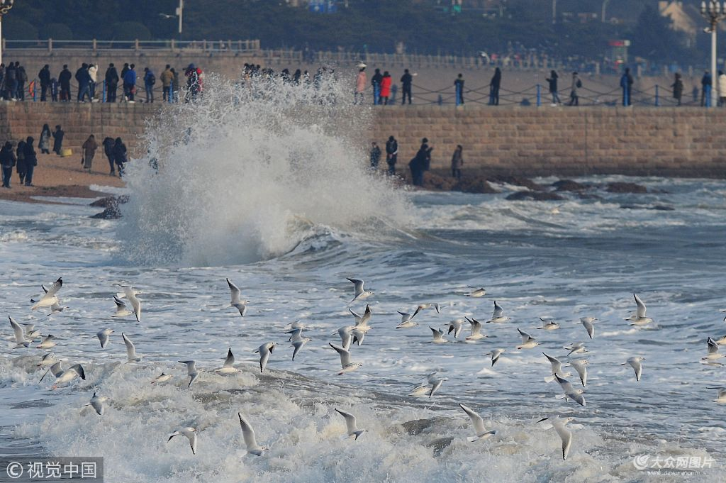 山东青岛栈桥景区出现数米高大浪,吸引众多游客看海观鸥成冬季旅游