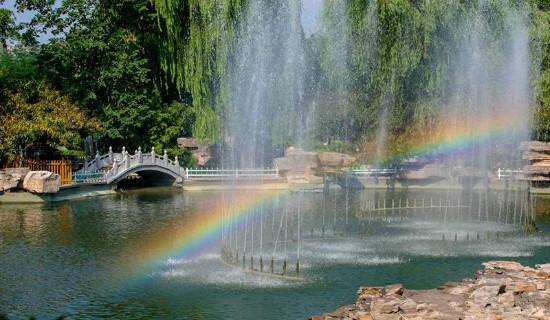 济南的夏天,也弥漫着诗意,让人心生欢喜