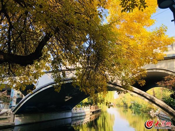 有一种美,叫济南的秋天