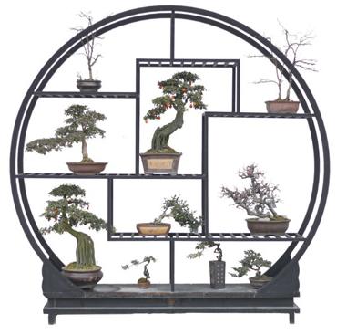 选盆 够大够深能透水   许多消费者购买盆景很注重花盆的材质.