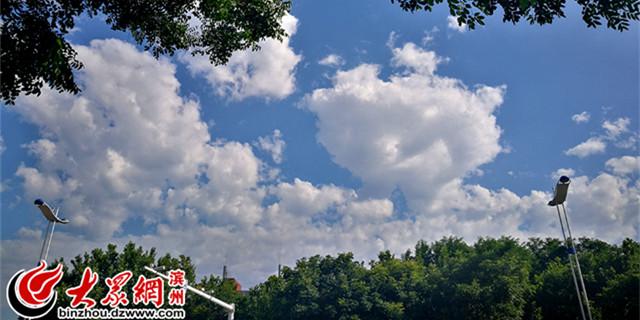 蓝天白云 滨州的天空美出新高度