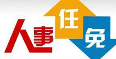 菏泽市人民政府关于任命王磊职务的通知