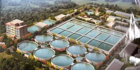 菏泽首次启动污泥焚烧处置项目 日处理量最高可达800吨