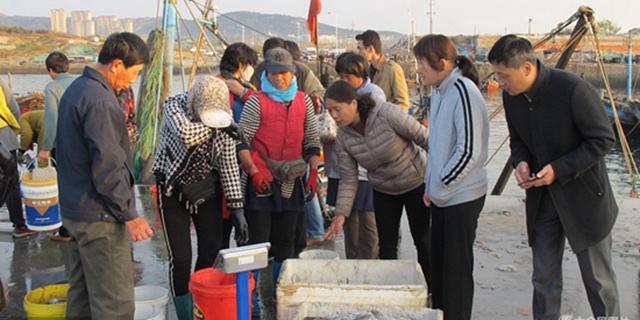 梭子蟹大放送 码头迎客提桶抢购过冬海鲜