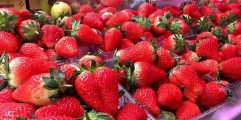 菏泽人注意!这种水果大量上市!很多人在传,千万别被骗了