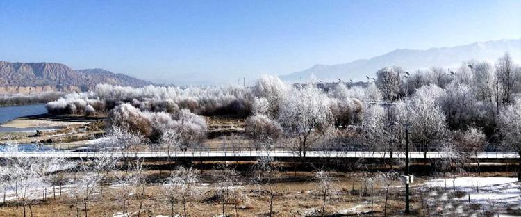 青海贵德黄河岸边现雾凇奇观
