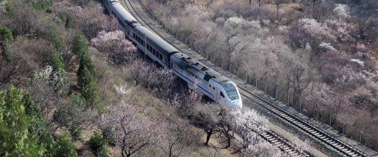 开往春天的列车