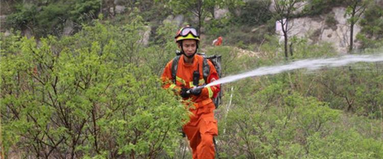 淄博市消防支队开展山林火灾扑救综合实战演练