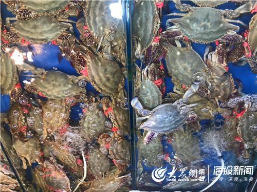 中秋节前烟台海鲜市场火热 螃蟹大虾迎销量高峰