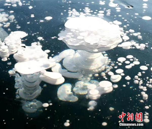 """漠河""""冰泡""""湖現千米""""冰泡"""""""