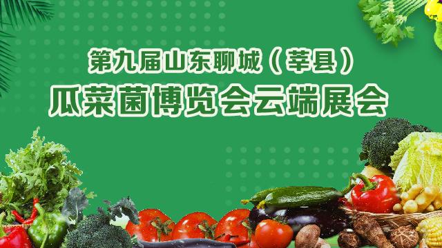 第九届山东聊城(莘县)瓜菜菌博览会云端展会