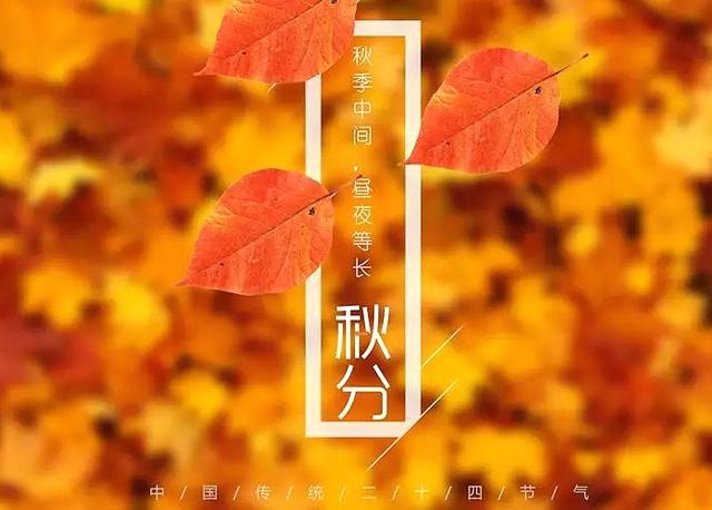 今日秋分!秋高气爽出游日,农作丰收看菏泽