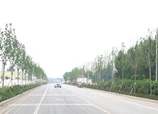 济宁对公路限高限宽设施和检查卡点清理整治