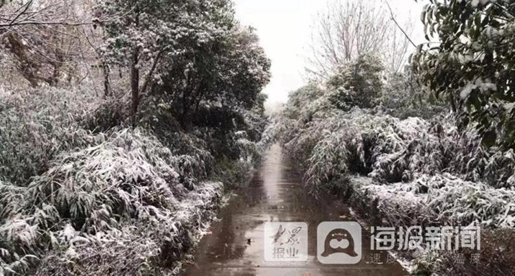 枣庄下雪了!最低温-10℃