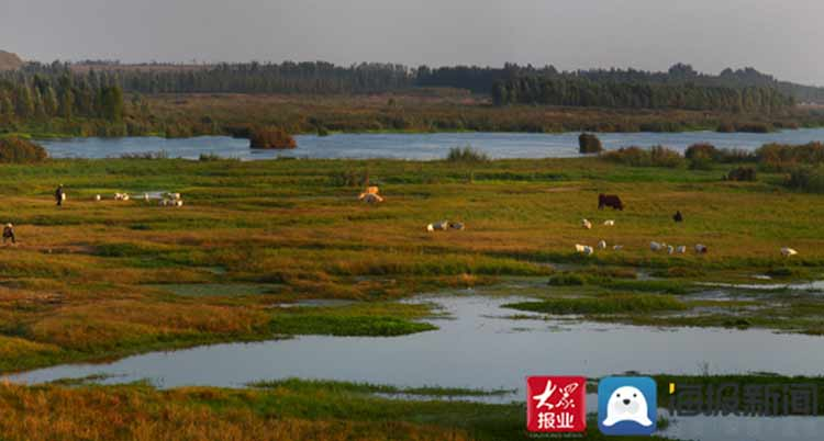 泰安市两处国家湿地公园试点正式通过验收