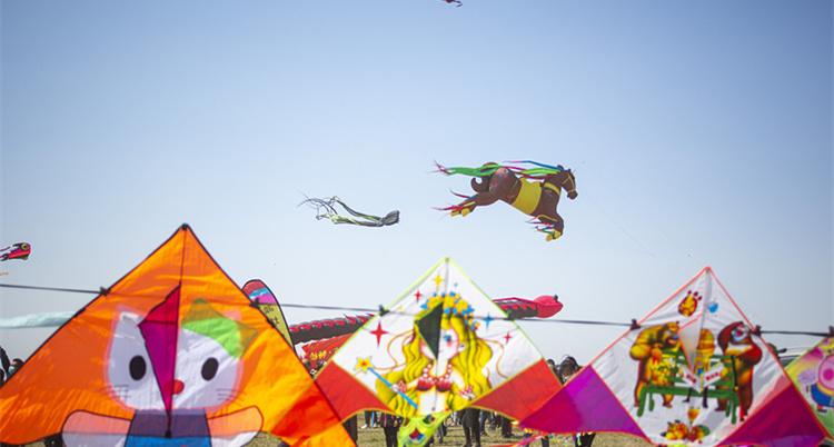 第38届国际风筝会在滨海开幕