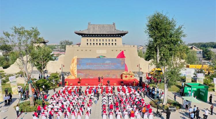 德州市2021年中国农民丰收节庆祝活动开幕