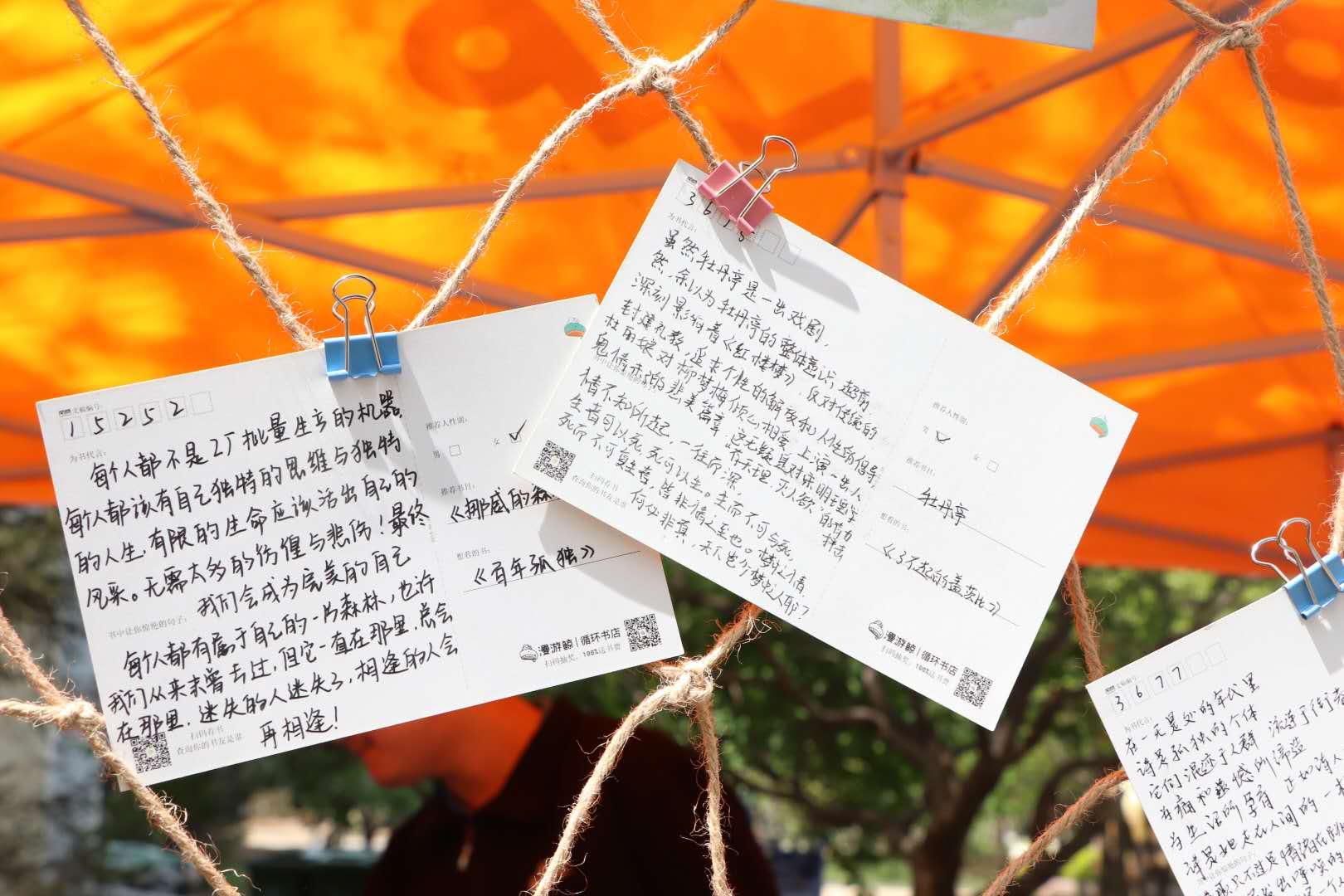 """山财大东方学院三叶草文学社联动百校互寄""""阅读""""明信片"""