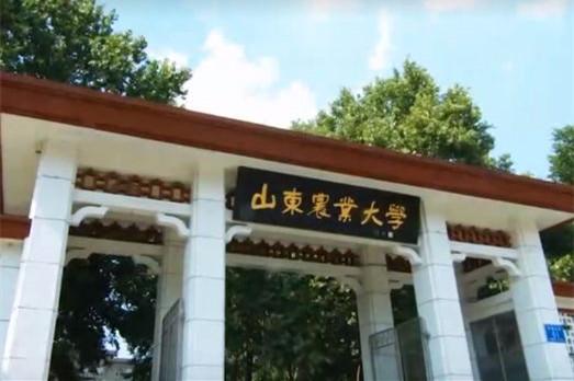 """山东农大三代""""蘑菇匠""""的助农情缘"""