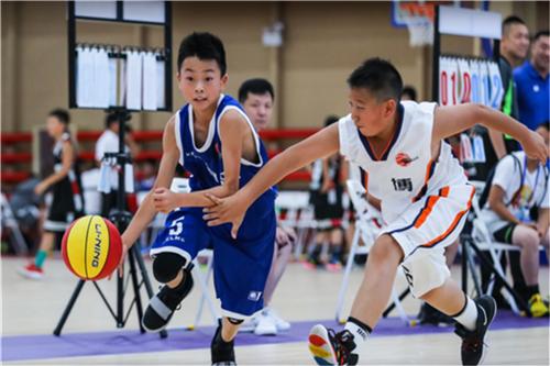 淄博市淄川篮球新联盟小队员征战全国赛事获佳绩