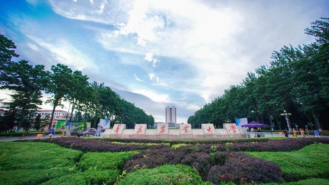 青岛农业大学2020年硕士研究生招生简章