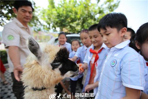潍坊之行圆满收官——济南野生动物世界科普活动火热持续中!