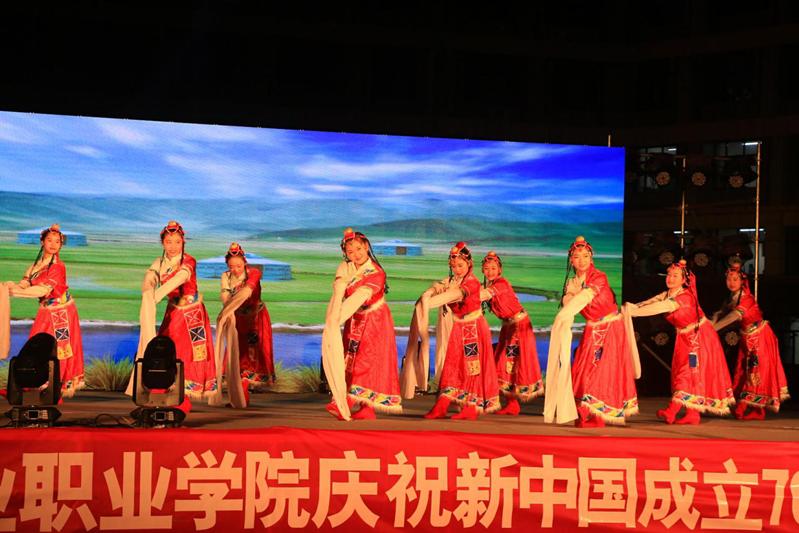 山东铝业职业学院举行庆新中国成立70周年暨2019年迎新晚会