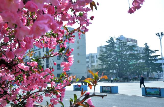 最美的春天在∏校�@!泰安�W子用�R�^���娲褐�美