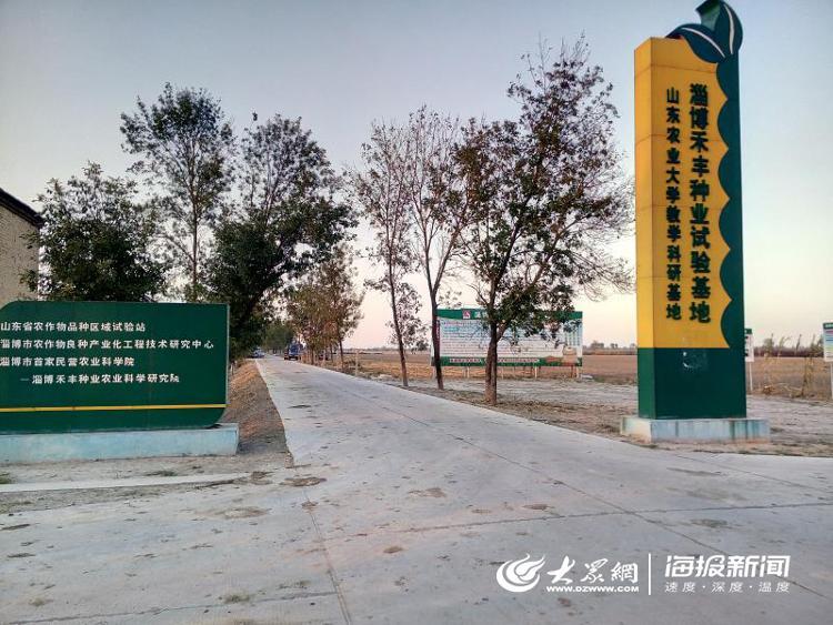 淄博禾丰种业科技股份有限公司目前日产2万余斤玉米种