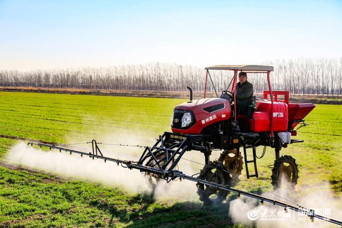 农机驾驶一台农药喷洒机进行麦田除草管理