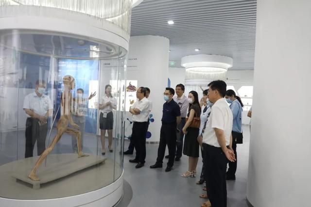 """260件标本+VR、3D科技揭示人体生命奥秘,青大再添""""科学打卡地"""""""