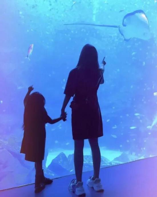 中国网|昆凌带孩子去海洋馆 与儿子女儿双手紧牵画面温馨