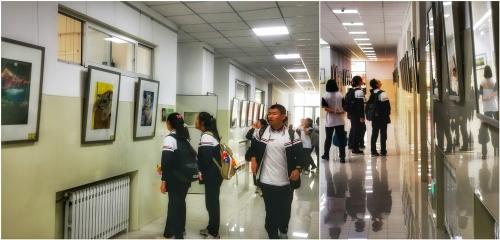 淄博实验中学举行艺术选修课教学成果和艺术特长生年度优秀作品展