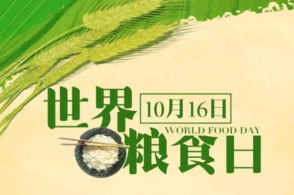 """世界粮食日丨全球8亿人""""喊饿"""",劝君更惜""""盘中餐"""""""