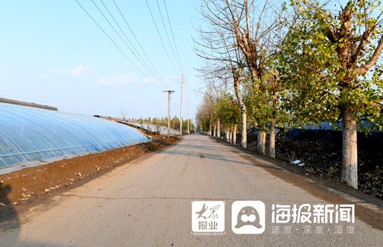 山东寿光:圣城街道街村道路全域升级