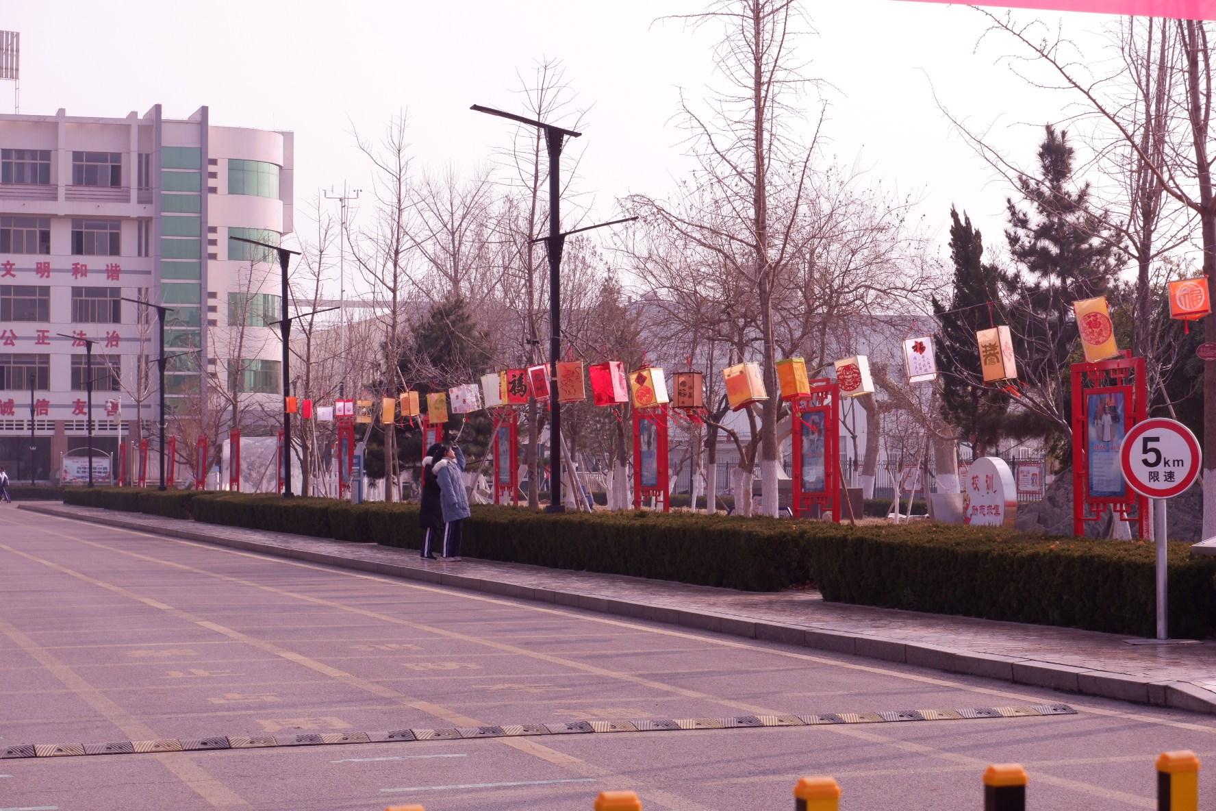 泰安市第二中学:感受传统文化 学生制作50盏花灯扮靓校园