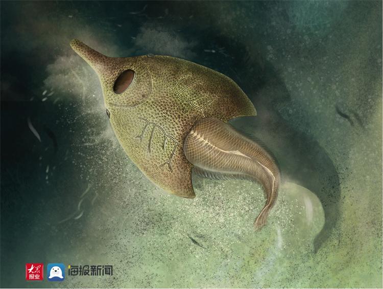 4.1亿年前鸭子吻鱼了? 山东科技大学这个本科生发现古鱼王国新属种!
