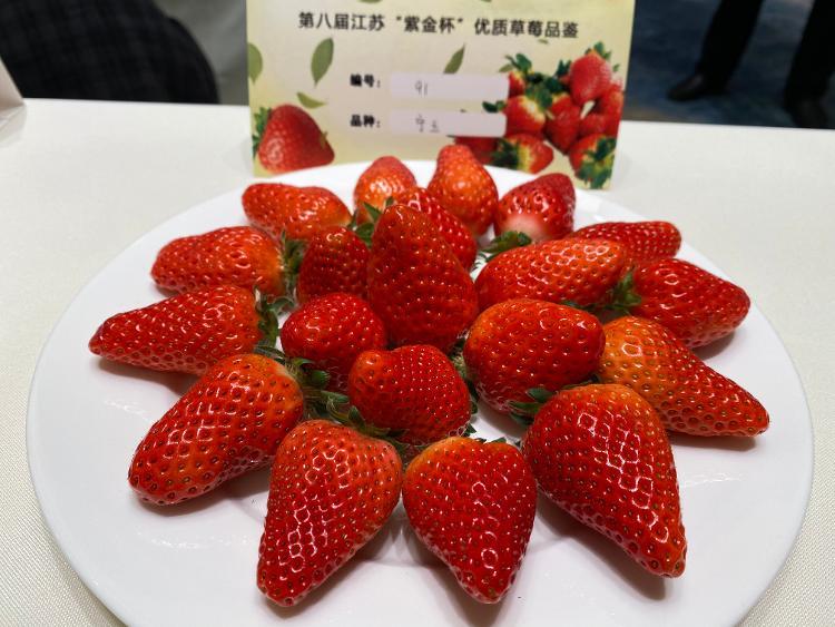 """一颗小草莓""""红火""""一片乡村"""