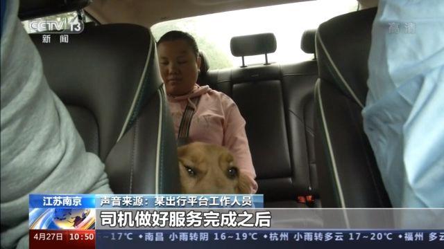 带导盲犬打车难?这个举措让人们踏实了!