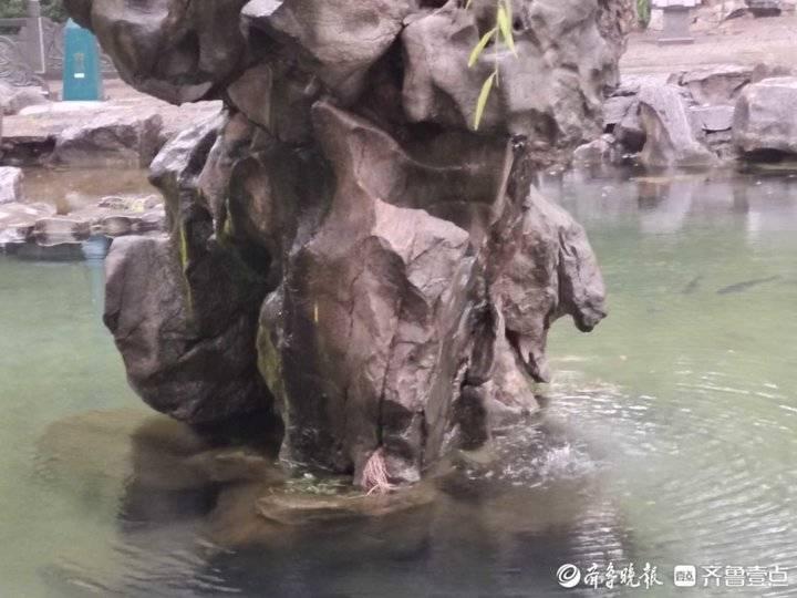 济南地下水位已经达到了29米左右