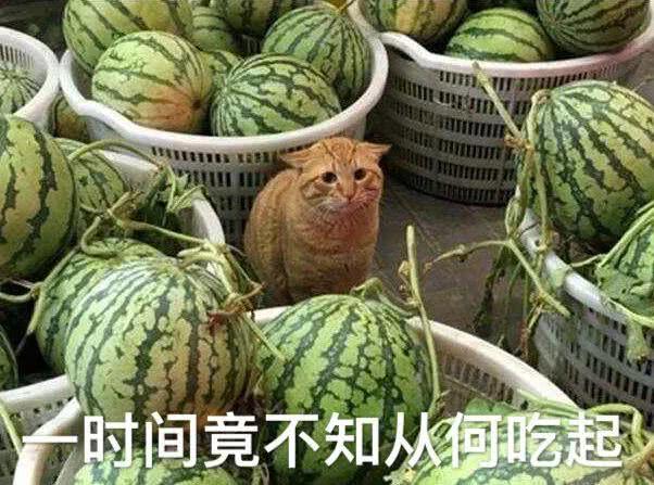 """我劝你,不要随便转发""""吃瓜""""截图_最近社会新闻"""